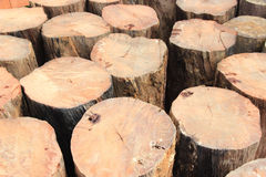 Timber wood Royalty Free Stock Photography