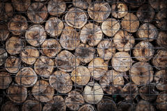 Timber Wood Royalty Free Stock Photo