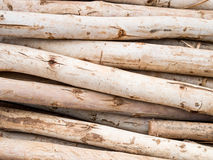 Timber wood Stock Photography