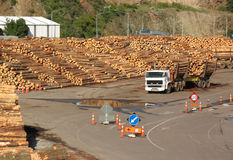 Timber Yard. A timber yard and truck loaded with logs Stock Photo
