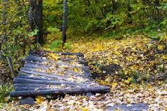 timbered мост Стоковая Фотография RF