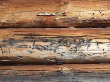 timbered стена стоковые изображения
