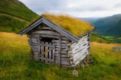 Timbered hay storage house. Old timbered hay storage house in Hemsedal, Norway royalty free stock images