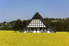 Timbered house with rape field in Germany Royalty Free Stock Image