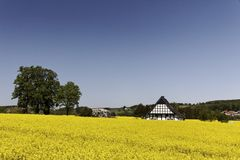 Timbered house with rape field in Lower Saxony, Germany Stock Images
