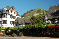 Timbered house with a vineyard. Half-timbered Houses with a Vineyard in the Background Stock Images