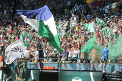 Timbers Army Royalty Free Stock Photo