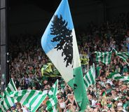 Timbers Army flags Stock Photos