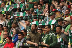 Timbers Army Royalty Free Stock Photos
