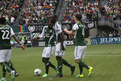 Timbers Army 2013 opener Royalty Free Stock Photo