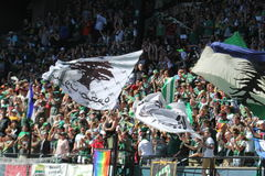 Timbers army Royalty Free Stock Image