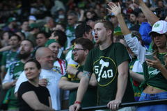 Timbers chant Royalty Free Stock Images
