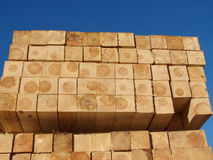 Timbers on a pallet. Blue sky in the background Royalty Free Stock Image