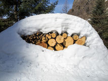Timbers in the snow. Some timbers under the snow stock image