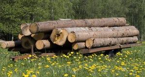 Timberwagon con legname Fotografia Stock Libera da Diritti