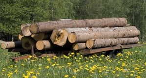 Timberwagon wtih timber Royalty Free Stock Photography