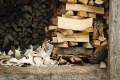 Timberyard Stock Photos