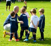 Timbits Soccer Royalty Free Stock Photo