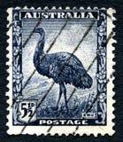 Timbre-poste australien d'émeu Photos libres de droits