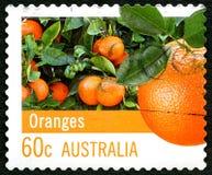 Timbre-poste australien d'oranges Photographie stock libre de droits