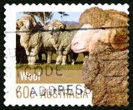 Timbre-poste australien de laine Photo stock