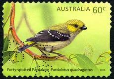 Timbre-poste australien repéré par quarante de Pardalote Photo stock