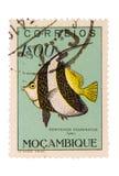 Timbre-poste de la Mozambique de cru Image stock