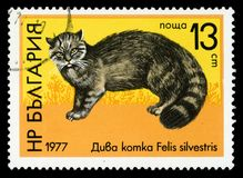 Timbre-poste de série de ` de faune de ` de la Bulgarie, 1977 photos stock