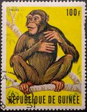 Timbre-poste 1969 La r?publique de Guin?e Chimpanz? Tarzan image libre de droits
