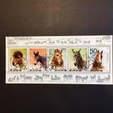 Timbres postaux avec des chevaux là-dessus photo stock