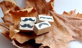 Timbro di gomma dei baffi Concetto di consapevolezza di salute del ` s degli uomini di Movember Immagini Stock