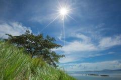 Timbun Mata Island arkivfoton
