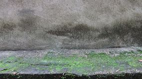 Time adds moss to the concrete royalty free stock photography