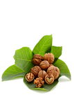 Time for autumn fruits, walnut on green Royalty Free Stock Photo