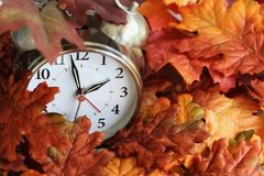 Time Change Daylight Savings Buried Clock. Vintage alarm clock buried underneath colorful fallen autumn leaves with shallow depth of field. Daylight savings time royalty free stock photo