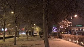 The time in a city Park in winter stock footage