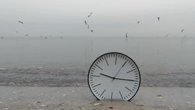 Time Concept Background, Sea Gulls in Sky, Clock in Water On Sand Beach Ocean. Time Concept Background, White Wall Clock in Water with Black Arrows on Sand Beach stock video footage