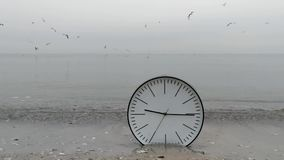 Time Concept Background, Wall Clock in Sand, Flying Sea Gulls. Time Concept Background, White Wall Clock with Black Arrows in Sand Beach, Flying Sea Gulls. Idea stock video