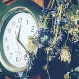 Time of Death royalty free stock images