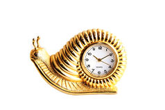 Time draggin by 03. A golden snail clock time piece on a white isolated background stock photos