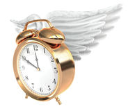 Time flies Royalty Free Stock Photo