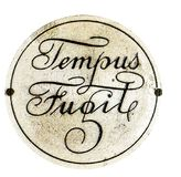 Time flies, illustration. `Tempus Fugit`. Latin phrase that means that time flees, escapes or flies Stock Photography