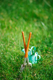 Time for garden now�. decorative small gardening tools and sno Stock Photography