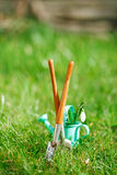Time for garden now�. decorative small gardening tools and sno Royalty Free Stock Photography
