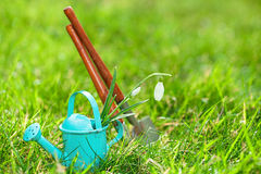 Time for garden now�. decorative small gardening tools and sno Royalty Free Stock Photos