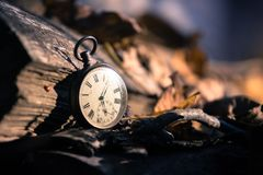 Time goes by: vintage watch outdoors; wood and leaves. Vintage watch leans on a wood piece and dry leaves, blurriness time goes clock duration speed up period royalty free stock images