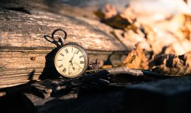 Time goes by: vintage watch outdoors; wood and leaves. Vintage watch leans on a wood piece and dry leaves, blurriness time goes clock duration speed up period stock photography