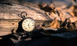 Time goes by: vintage watch outdoors; wood and leaves. Vintage watch leans on a wood piece and dry leaves, blurriness time goes clock duration speed up period stock image