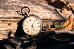 Time goes by: vintage watch outdoors; wood and leaves. Vintage watch leans on a wood piece and dry leaves, blurriness time goes clock duration speed up period stock images
