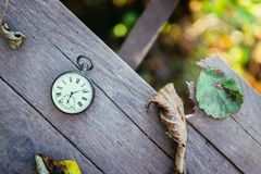 Time goes by: vintage watch outdoors; wood and leaves. Vintage pocket watch on a wood board, colourful leaves, autumn time goes clock duration speed up period stock image